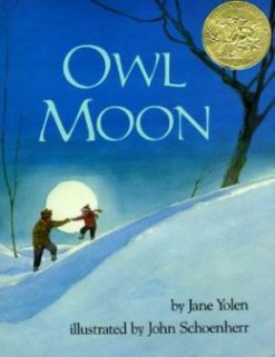 OwlMoon